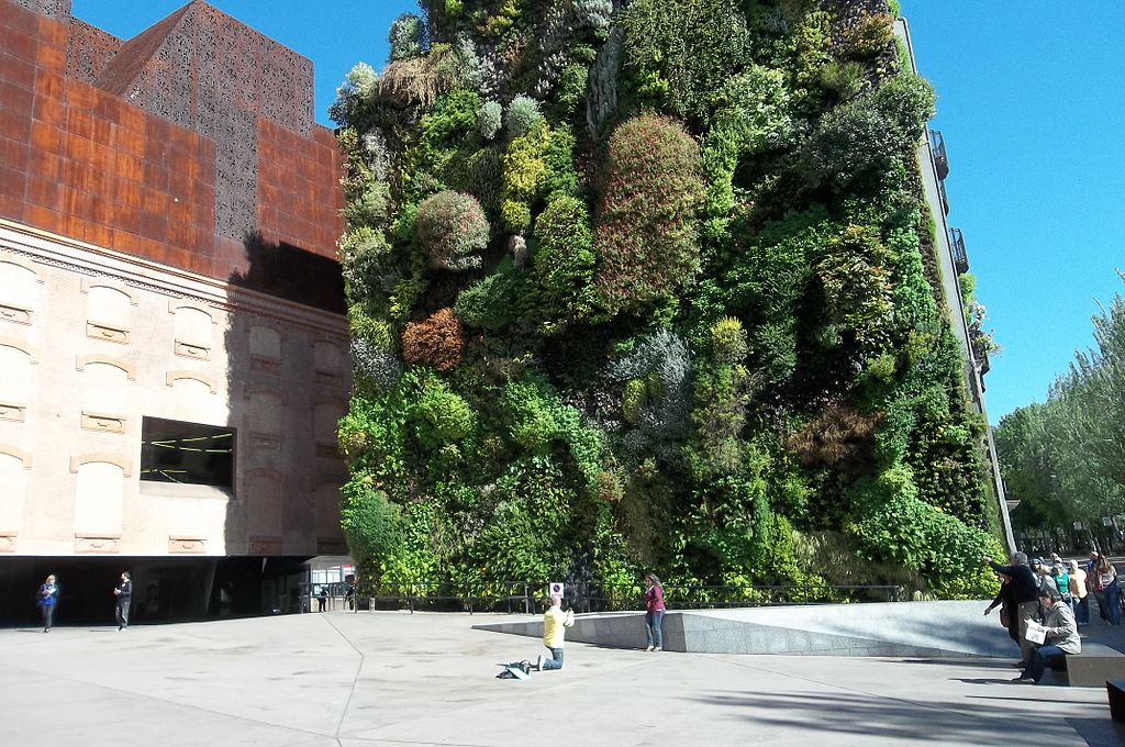 green walls: more than just a garden on the wall
