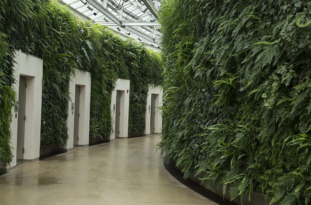 a look at beautiful green walls around the world
