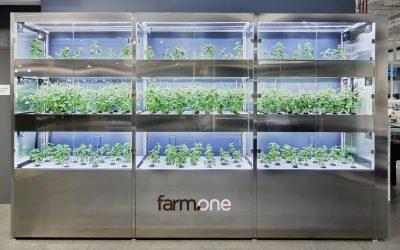 spotlight: farm.one brings the farm to whole foods