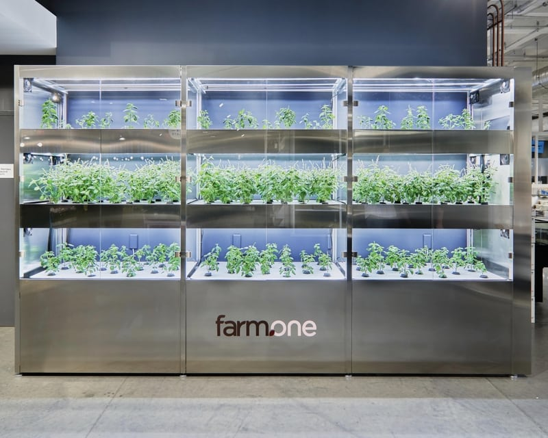 spotlight: farm.one brings the farm to whole foods