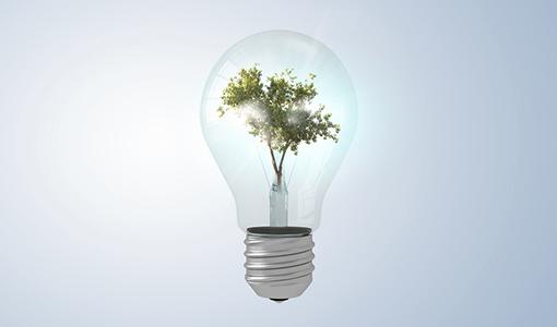 marlo values sustainable energy