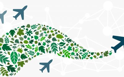 sustainable tourism & eco-friendly travel