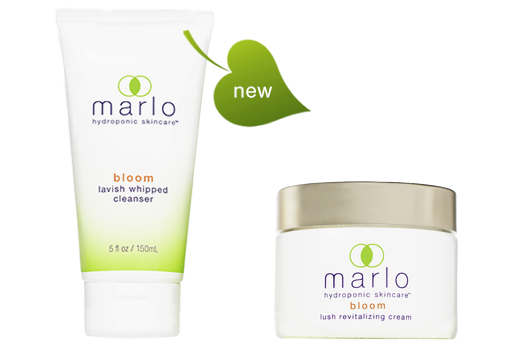 marlo bloom cleanser and bloom cream