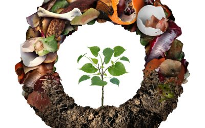 what is composting and why should i care?